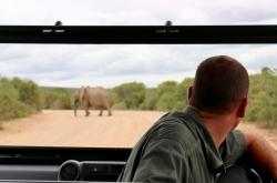 addo-elephant-national-park-5